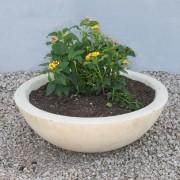 Mesa Precast Planters, Ornamentals